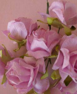 Fiori di Carta - Rose Selvatiche Lilla