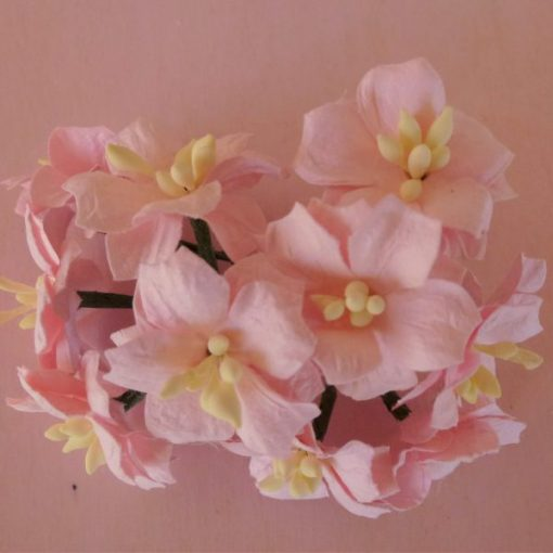 Fiori di Carta - Fiori di Melo Rosa Pallido