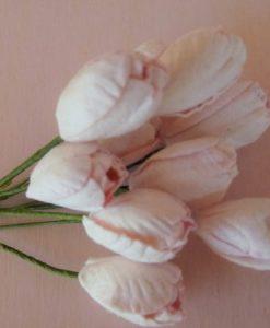 Fiori di Carta - Tulipani Rosa Baby