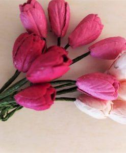 Fiori di Carta - Tulipani Tonalità Rosa (5 colori)