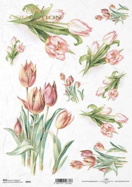 Tulipani - Carta di riso A4