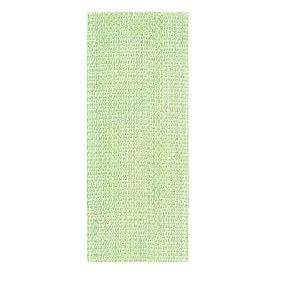 Key lime Seam binding - Nastro 5m 1